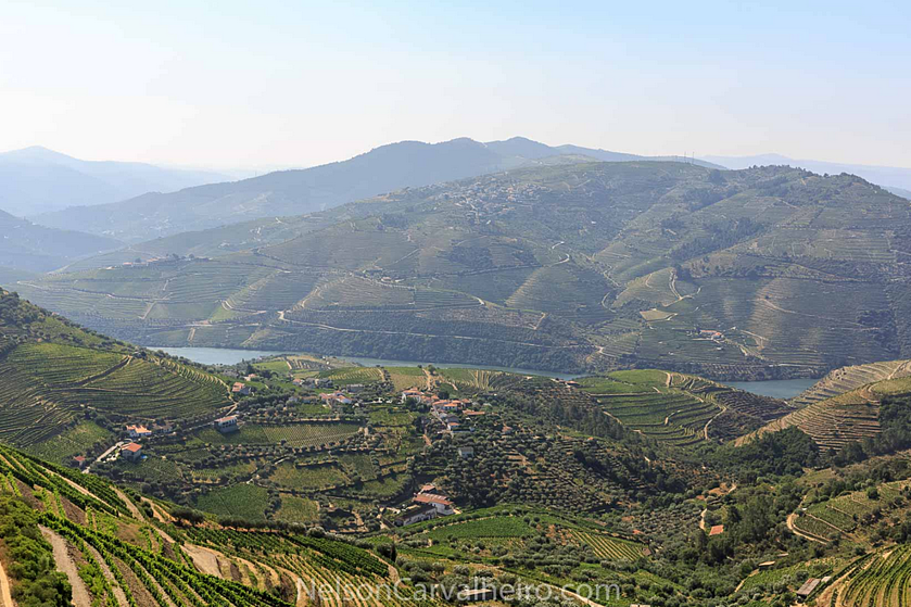 nelsondouro4, douro, douro valley, douro guide, wine travel guide