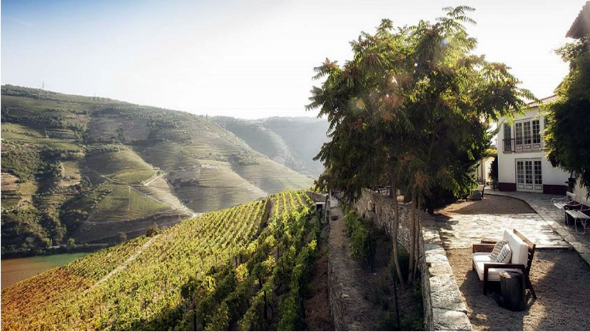 Quinta Nova; Fall Tours in Douro; Harvest Season in Douro