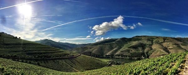 Quinta Nova Luxury Winery House - Newsletter