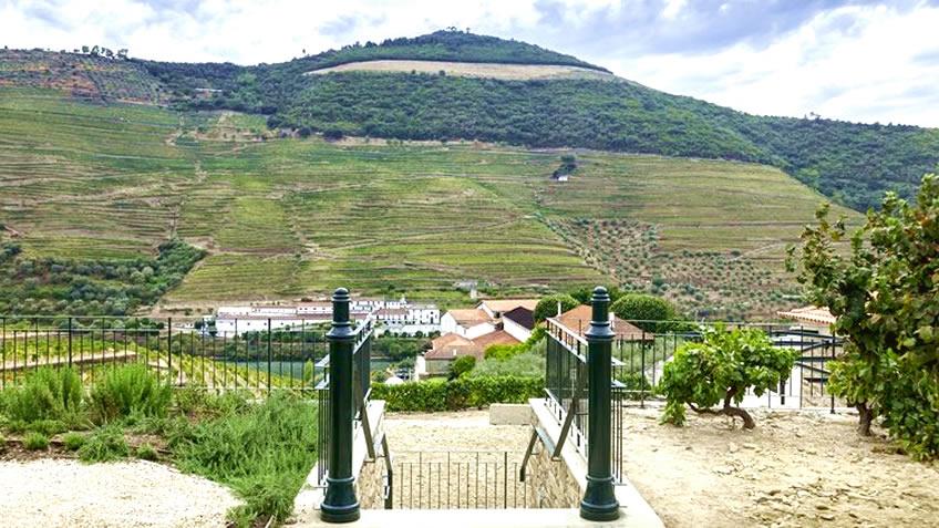 Tour in Douro