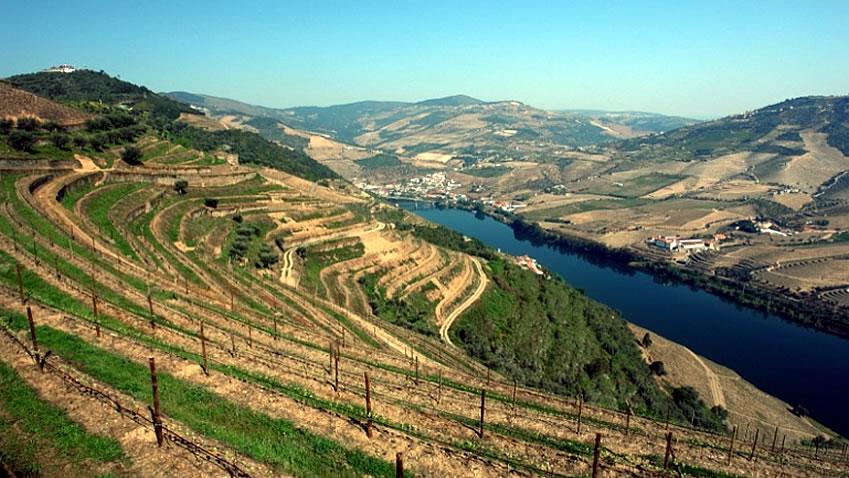 Quinta das Carvalhas; Douro Wine Tour
