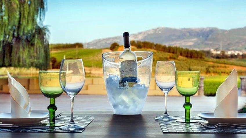 Quinta do Gradil; Lisbon Wine Region; Lisbon City Break; Winter Getaway