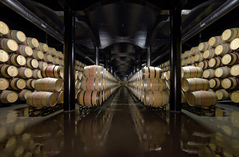 Quinta_do_Castro_Winery