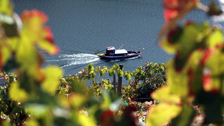 Rabelo Boat Douro River Cruise