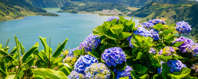 ST_Azores2-650x260