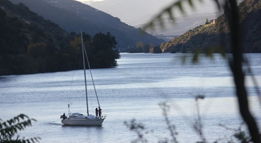 Sailing Boat Cruise