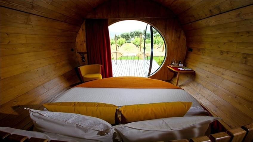 Wine Barrel Quinta da Pacheca; Hotel in Douro; Tour in Douro