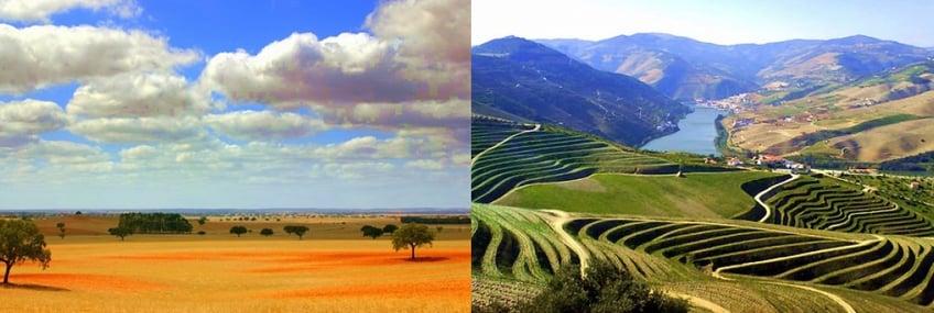 alentejo-plains-planicies-douro-river-rio.jpg