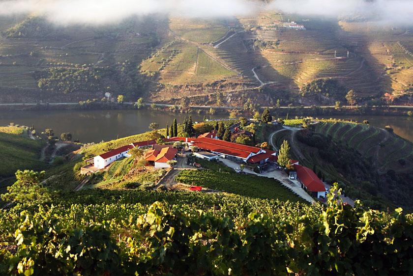 Best Douro Wineries