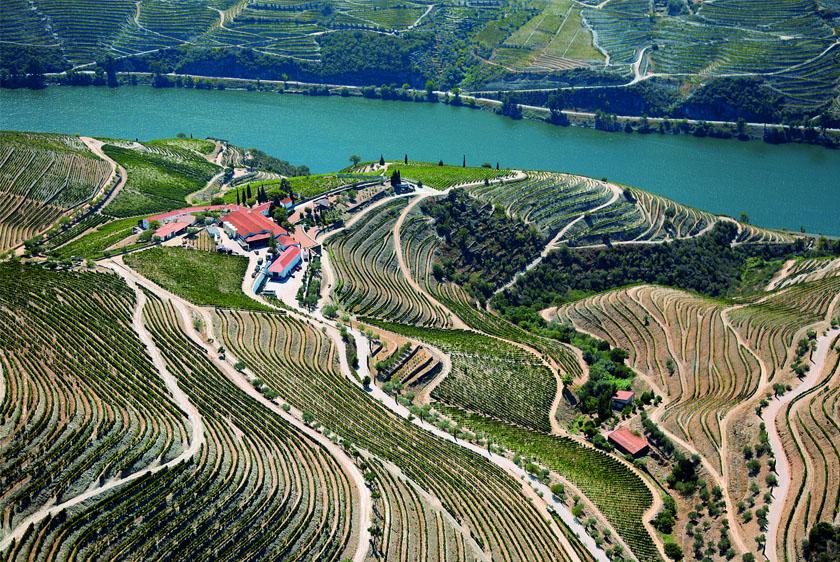 Spring Break in the Douro Valley