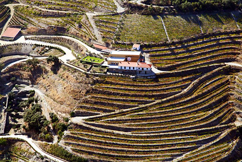 Best Douro Wineries - Quinta do Pôpa