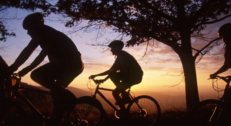 Bike, Sports, Health and Wellness tours