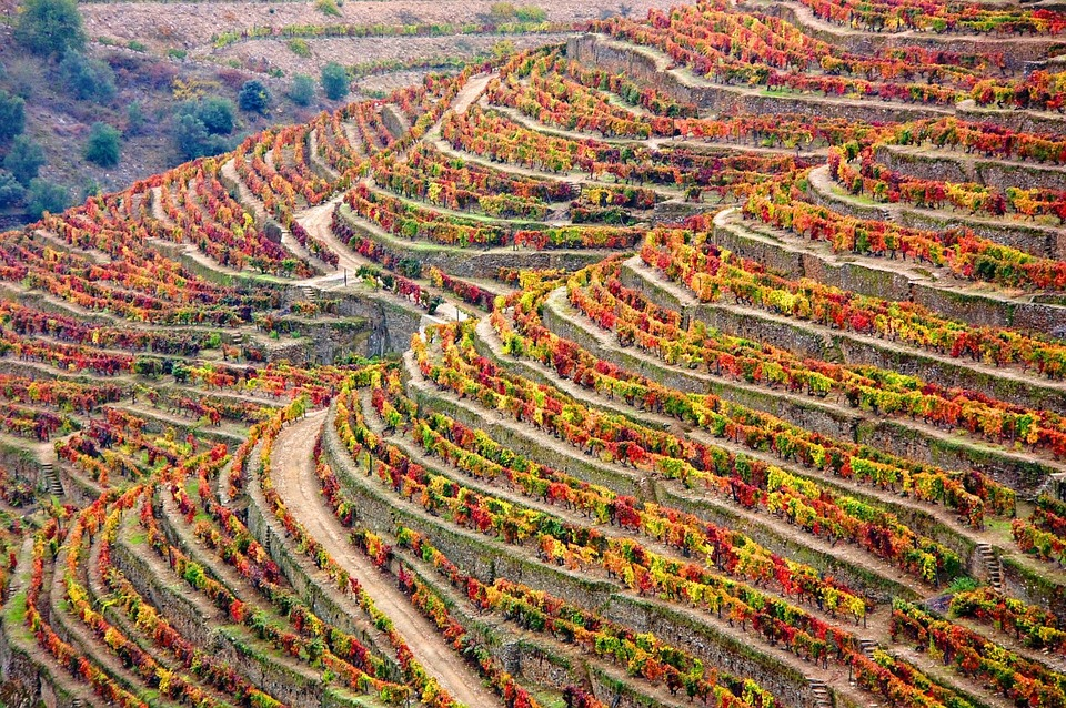Fall Getaways in Portugal