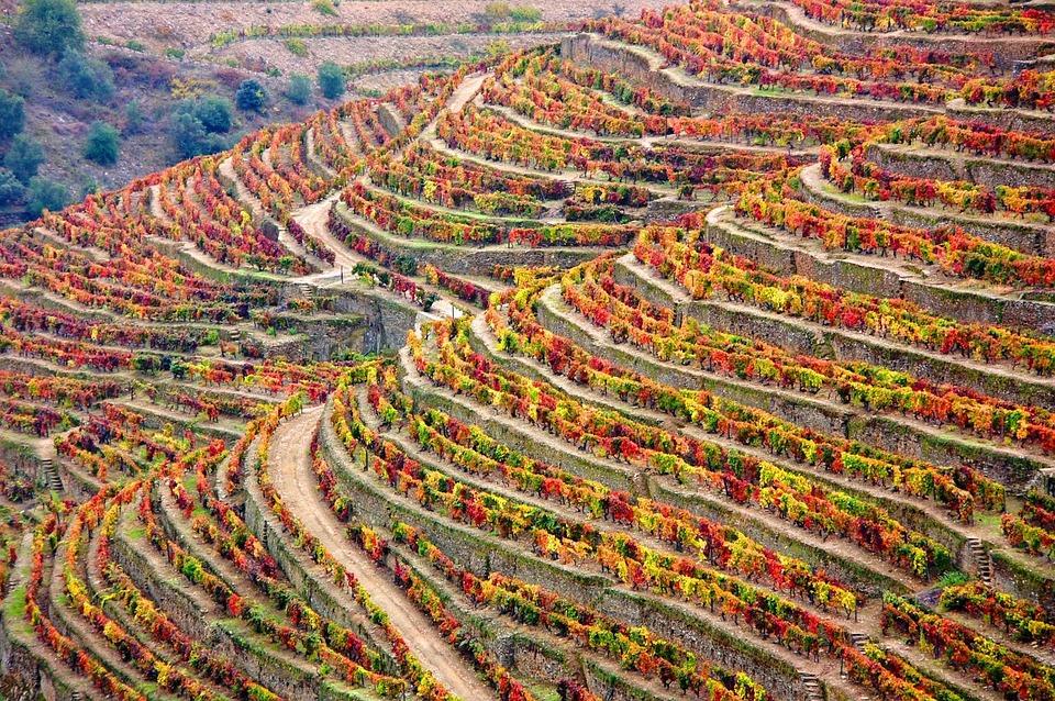 Fall Getaways in Portugal