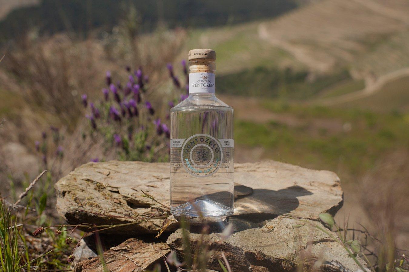 gin-de-ventozelo-na-pedro