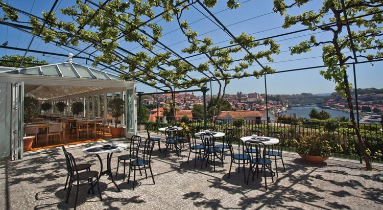 Graham's view over Douro, wine tasting, port wine cellars tour.jpg