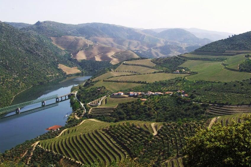 Douro Region