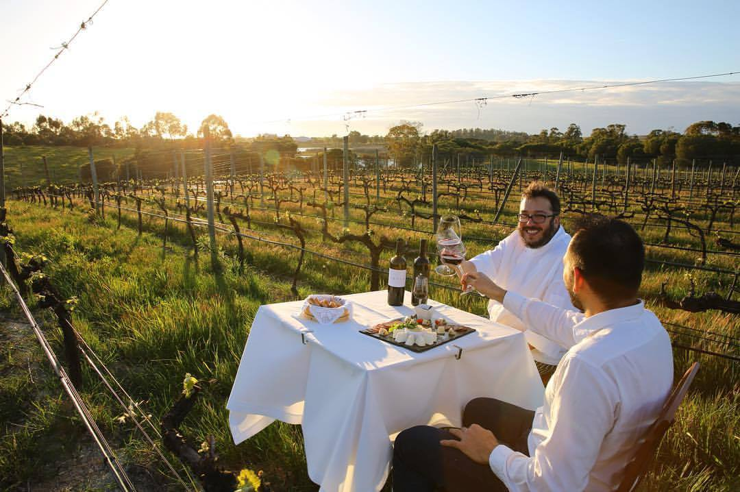 nelson-carvalheiro-wine-tourism-in-portugal-epicurean-travel-experiences-alentejo-sunset-vineyards.jpg