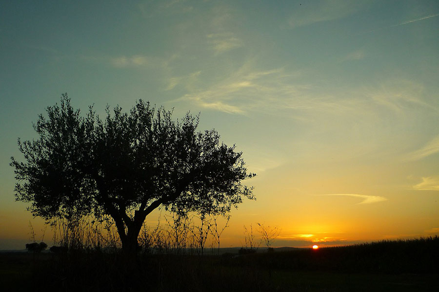 Reasons to Visit Portugal - Peacefulness