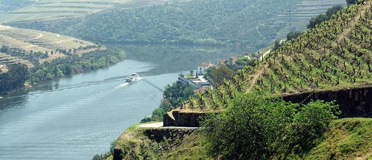 Three Day Short Break in Douro - Quinta das Carvalhas