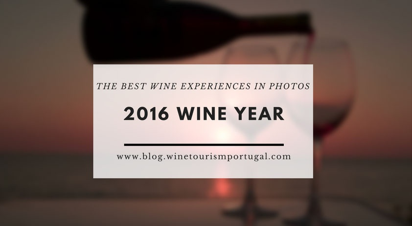 2016 Best Wine Experiences in Pictures