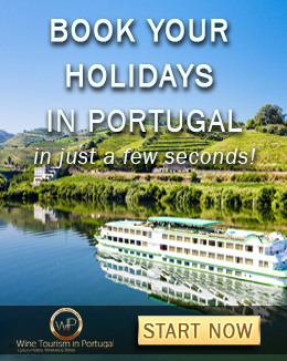 Vacations in Portugal 2017