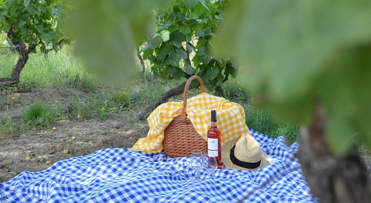 Outdoor Wine Tastings and Picnics in Portugal