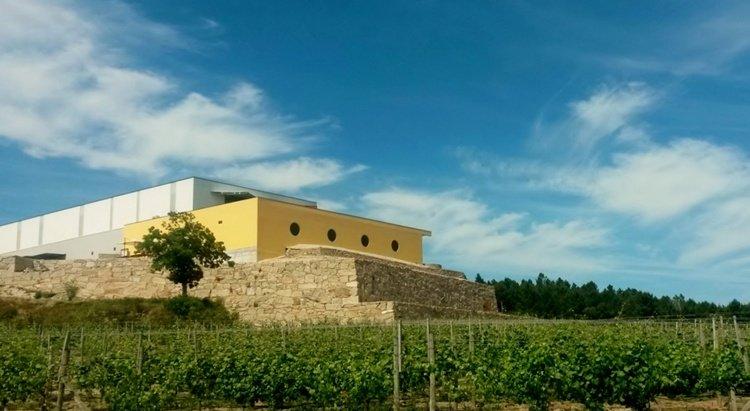 quinta de santa cristina, vinho verde, wine region, portugal