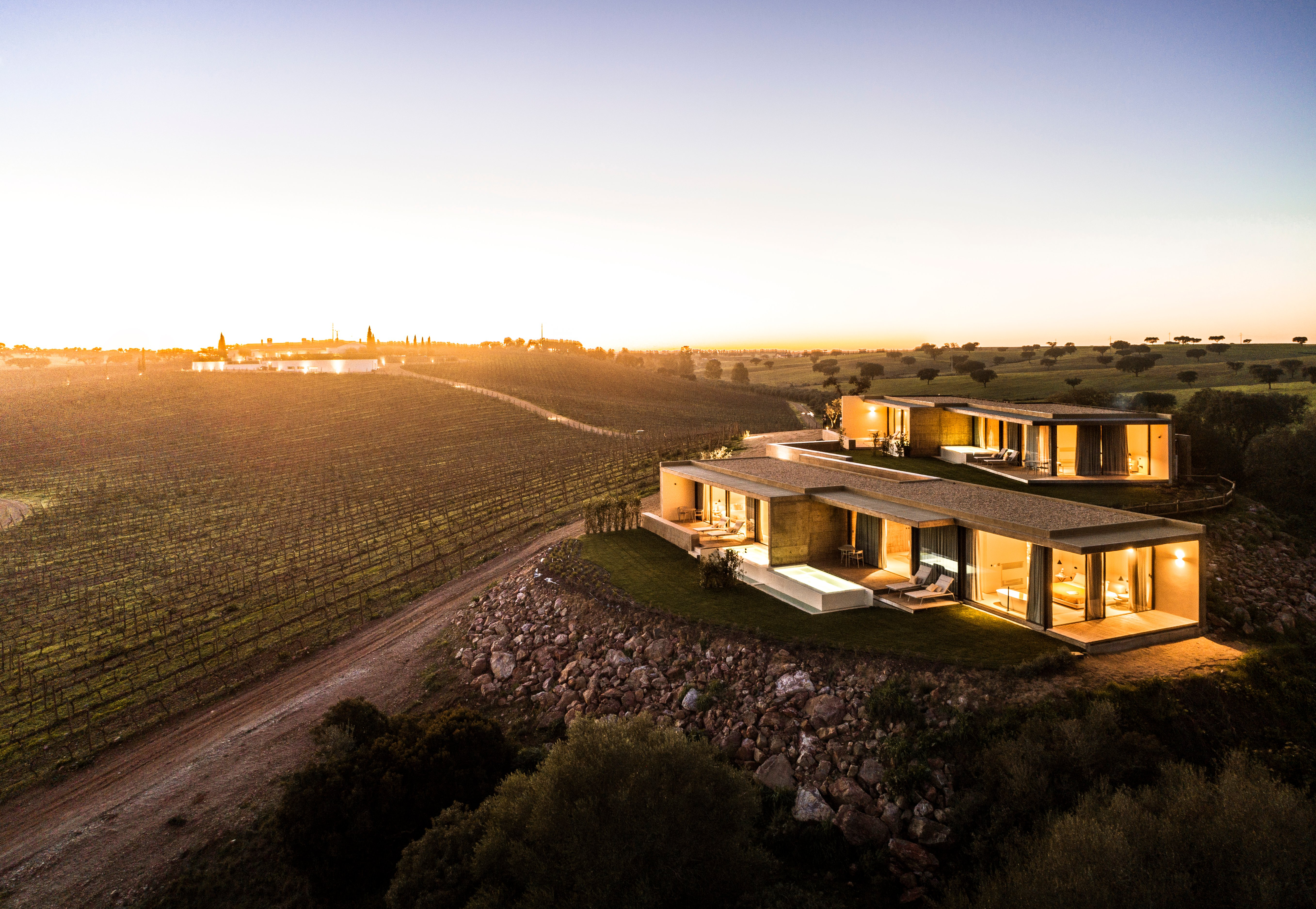 Wine Experiences:From the Charming Douro Valley to the Delightful Alentejo