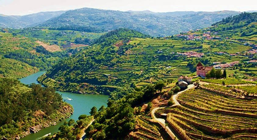 Spring Tour in Douro - The Best Things to Do and See