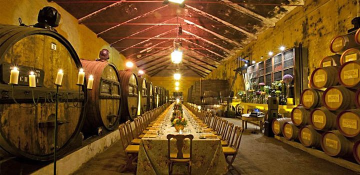 What is Wine Tourism? And What type of Wine Traveler are You?