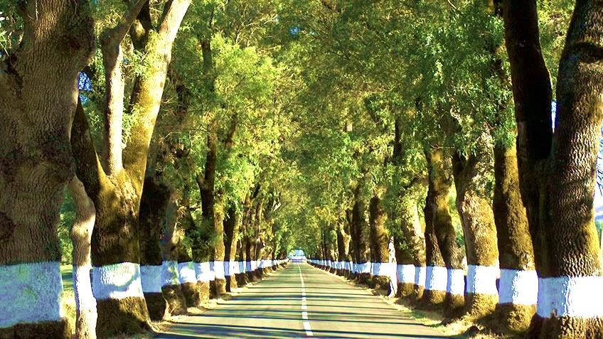 A 3-Day Trip in Alentejo