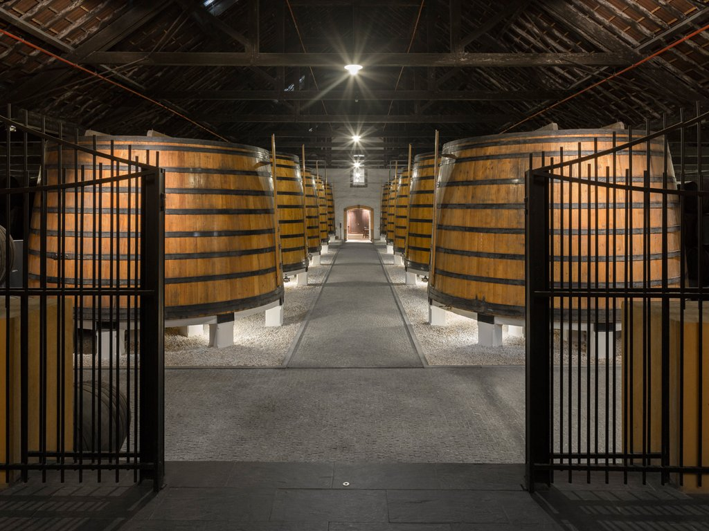 10 Wine Tours You Can't Miss in Porto