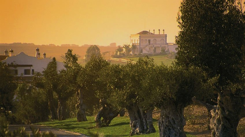 The Best Alentejo Wine Routes