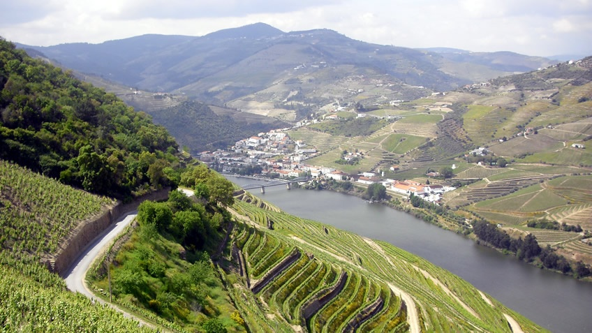 A Day Trip to the Douro Valley