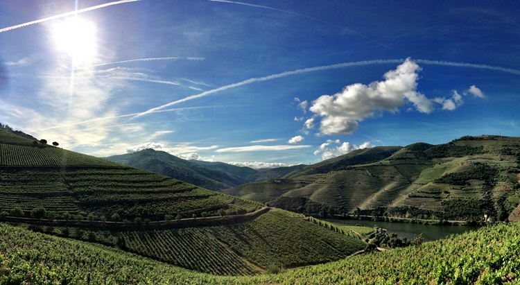 Unveil All About This 3-Day Tour in Douro Valley