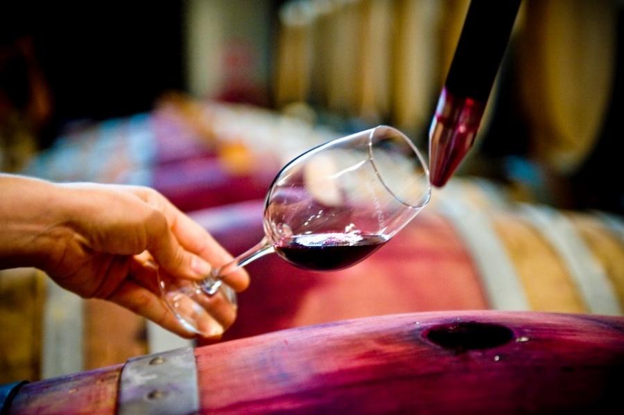 Best Wine Tours & Wine Tastings in Portugal