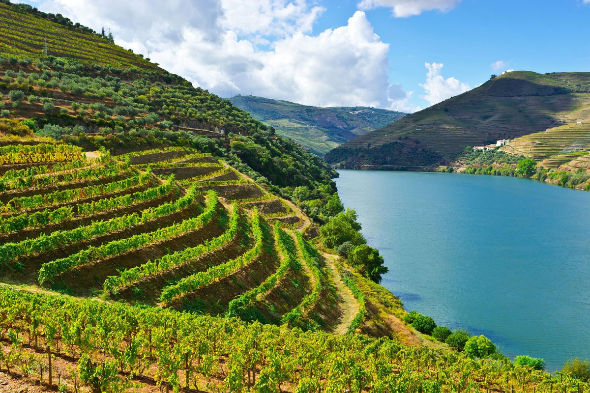 Cool and Exclusive Things to Do in Douro Valley Now