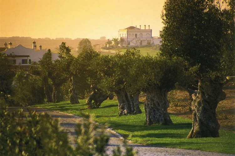Uncover Top 10 Private Experiences at Alentejo