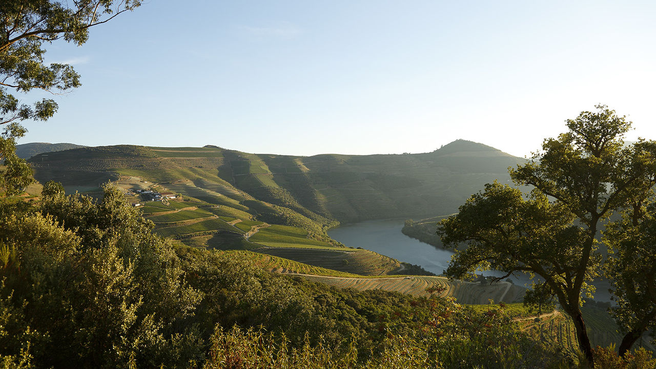 The Best Summer Trends in Douro 2021